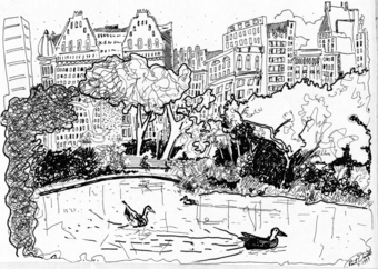 Ducks in the Park - Pen and Ink